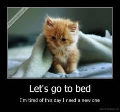 I need a new bed  sleepy, kitty