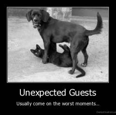 unexpected, guests,guest, not, on, time